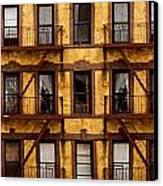 New York City Apartment Building Study Canvas Print by Amy Cicconi