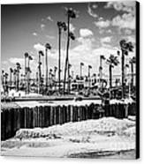 Newport Beach Dory Fishing Fleet Black And White Picture Canvas Print by Paul Velgos