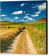 Nice Landscape Summer Canvas Print by Boon Mee