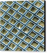 Nickel Electron Micrograph Grid Canvas Print by David M. Phillips