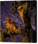 Night Owls Canvas Print