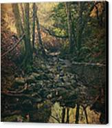 No Matter How Far Canvas Print by Laurie Search