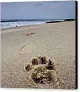 No Maw But I Got A Paw Canvas Print by Peter Tellone