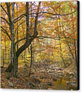North Creek Autumn - Mid Afternoon - 04043 Canvas Print by Byron Spencer