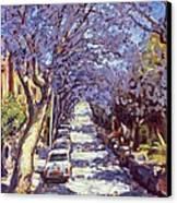 North Sydney Jacaranda Canvas Print