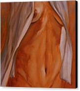 Nude In Shirt IIi Canvas Print by John Silver