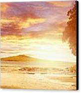Nz Sunlight Canvas Print by Les Cunliffe