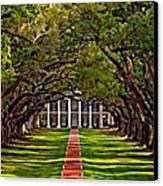 Oak Alley II Canvas Print by Steve Harrington