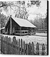Okefenokee Home Canvas Print by Southern Photo
