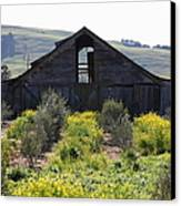 Old Barn In Sonoma California 5d22236 Canvas Print by Wingsdomain Art and Photography