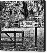 Old Chisolm Island Barn Canvas Print by Scott Hansen