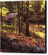 Old Mountain Shed Canvas Print by Paul W Faust -  Impressions of Light