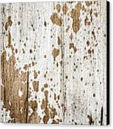 Old Painted Wood Abstract No.3 Canvas Print