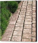 Old Pavers Alley Canvas Print by Olivier Le Queinec