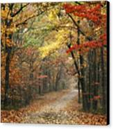 Old Trace Fall - Along The Natchez Trace In Tennessee Canvas Print