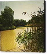 Old Woman Creek  Canvas Print