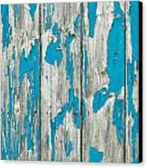 Old Wood Canvas Print by Tom Gowanlock
