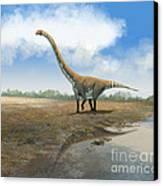 Omeisaurus Tianfuensis, An Euhelopus Canvas Print by Roman Garcia Mora
