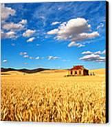 On Golden Fields Canvas Print