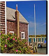 On The Cape Canvas Print