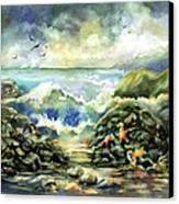 On The Rocks Canvas Print by Ann  Nicholson