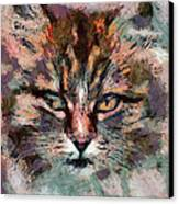One More Cat Canvas Print by Yury Malkov