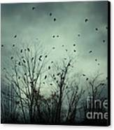 One November Night Canvas Print by Sharon Coty
