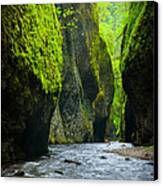 Oneonta River Gorge Canvas Print by Inge Johnsson