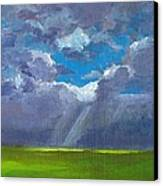 Open Field Majestic Canvas Print by Patricia Awapara
