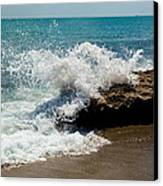 Opposing Forces Canvas Print by Michelle Wiarda
