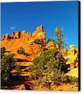 Orange Foreground A Blue Blue Sky  Canvas Print