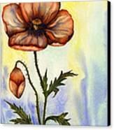 Orange Poppy Canvas Print by Diane Ferron