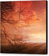 Orange Sunrise On Field Canvas Print by Dorothy Walker