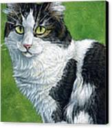 Oreo Canvas Print by Cara Bevan