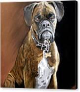 Oscar Canvas Print by Artist Karen Barton