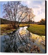 Ossow - Dluga River Canvas Print by Tomasz Dziubinski