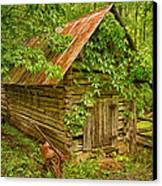 Out Back Canvas Print by Priscilla Burgers