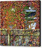Over The Back Fence Canvas Print by Paul W Faust -  Impressions of Light