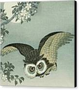 Owl - Moon - Cherry Blossoms Canvas Print