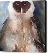 Owl Canvas Print by Sherry Harradence