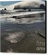 Pacific Fog Canvas Print by Adam Jewell