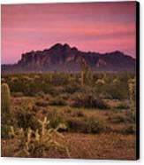Paint It Pink Sunset  Canvas Print by Saija  Lehtonen