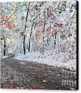 Painted Snow Canvas Print