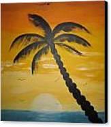 Palm Tree Canvas Print by Haleema Nuredeen