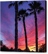 Palm Trees Sunset Canvas Print