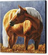 Palomino Horse - Gold Horse Meadow Canvas Print