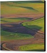 Palouse Curves Canvas Print