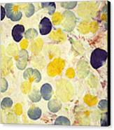 Pansy Petals Canvas Print by James W Johnson