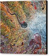 Parable Of Anagenneo Canvas Print