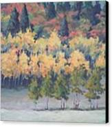 Park City Meadow Canvas Print